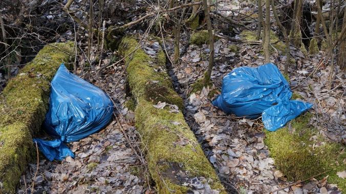 plastic-bags-1322638_960_720